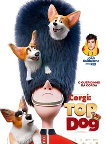 Corgi - Top dog